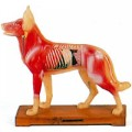 Model of dog 11.4 inches