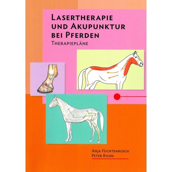 Lasertherapie und Akupunktur bei Pferden - Therapiepläne