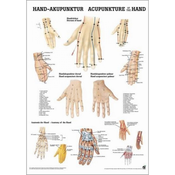 Acupuncture of the Hand Poster 50x70cm Laminated